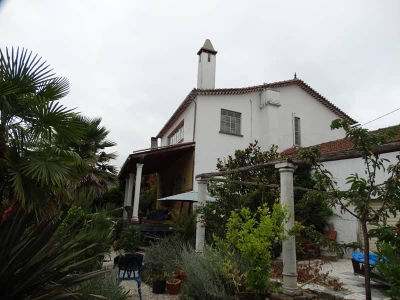 Housesitting assignment in Marmeleira, Portugal