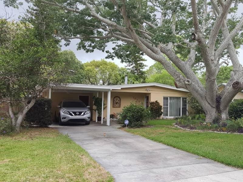 Housesitting assignment in Dunedin, Florida, United States
