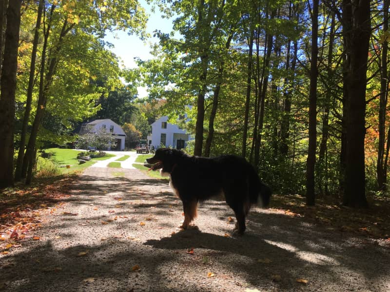 Housesitting assignment in Kennebunkport, Maine, United States