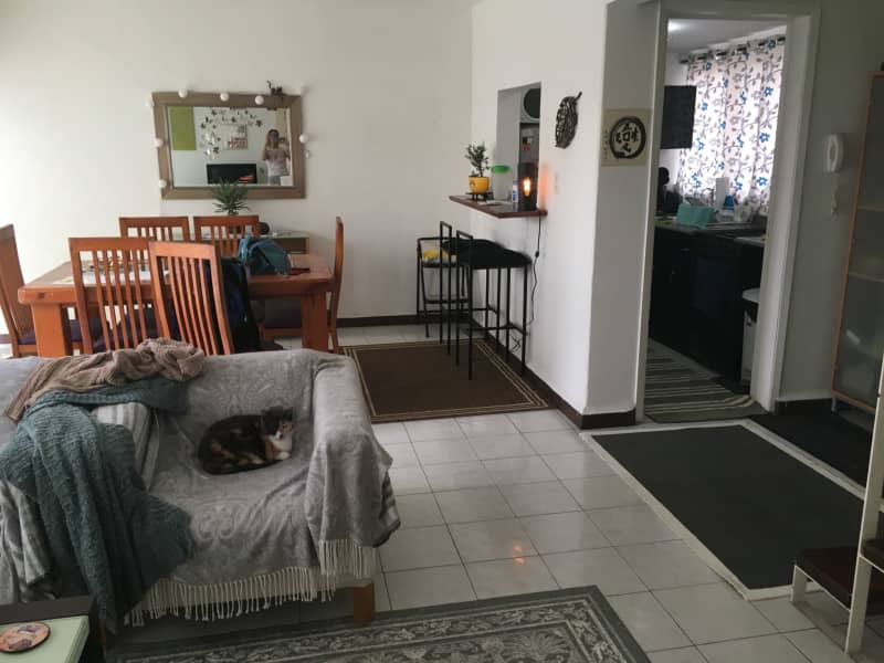 Housesitting assignment in Benito Juarez, Mexico