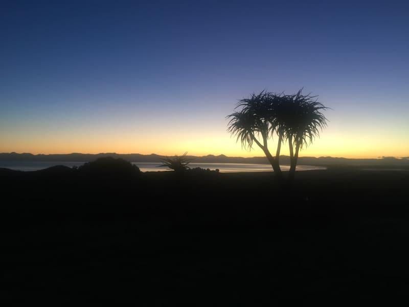 Housesitting assignment in Mangatangi, New Zealand