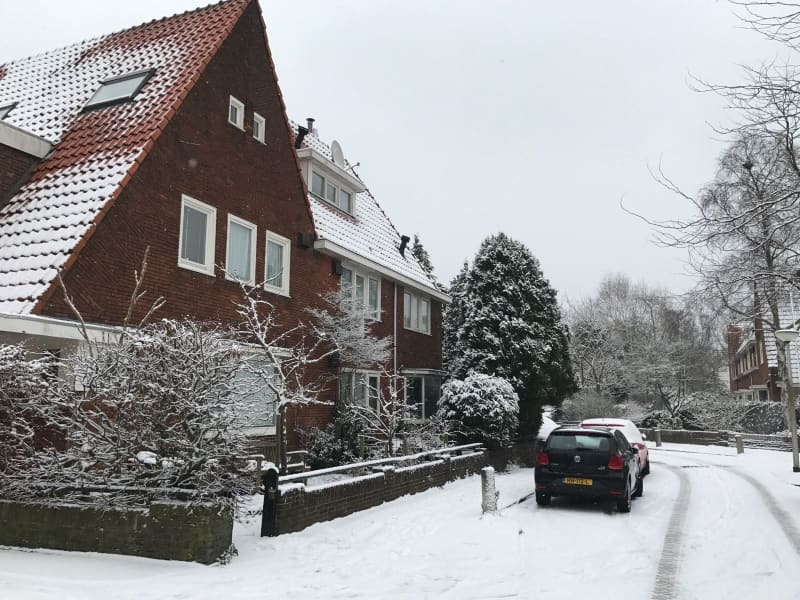 Housesitting assignment in Amstelveen, Netherlands
