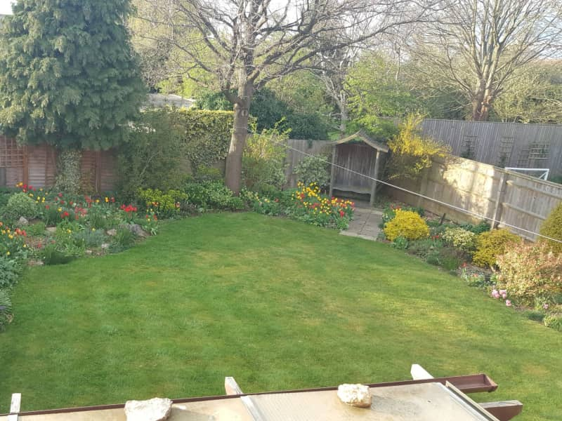 Housesitting assignment in Newbold on Stour, United Kingdom