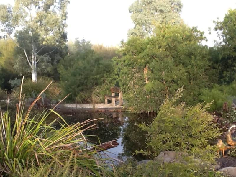 Housesitting assignment in Taggerty, Victoria, Australia