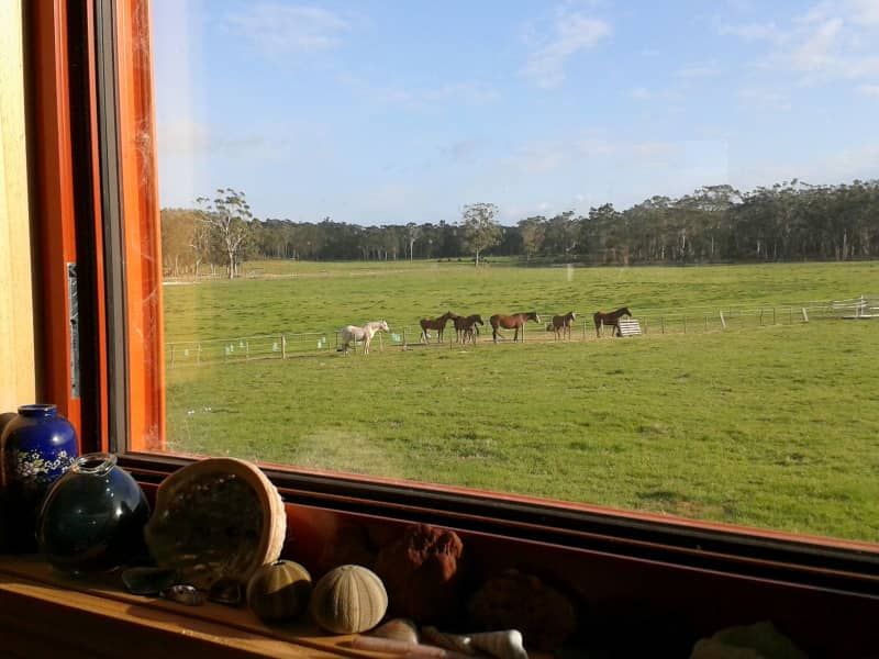 Housesitting assignment in Nubeena, Tasmania, Australia