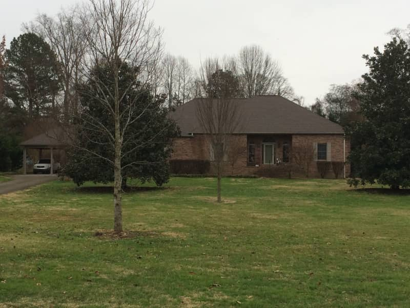 Housesitting assignment in Knoxville, Tennessee, United States