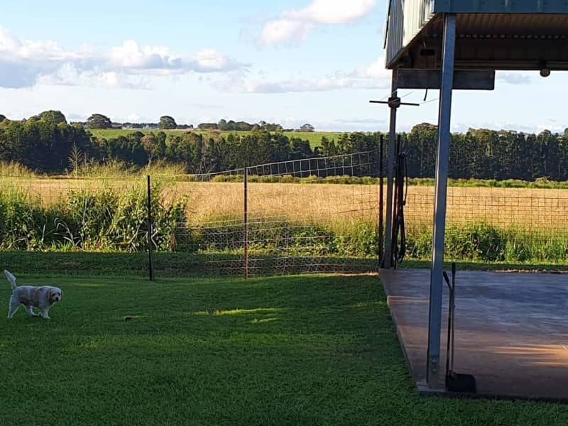Housesitting assignment in Atherton, Queensland, Australia