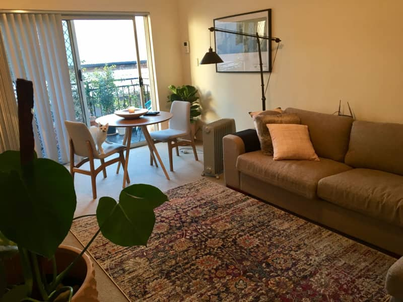 Housesitting assignment in Annandale, New South Wales, Australia