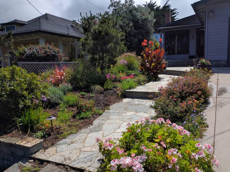 Housesitting assignment in Montara, California, United States