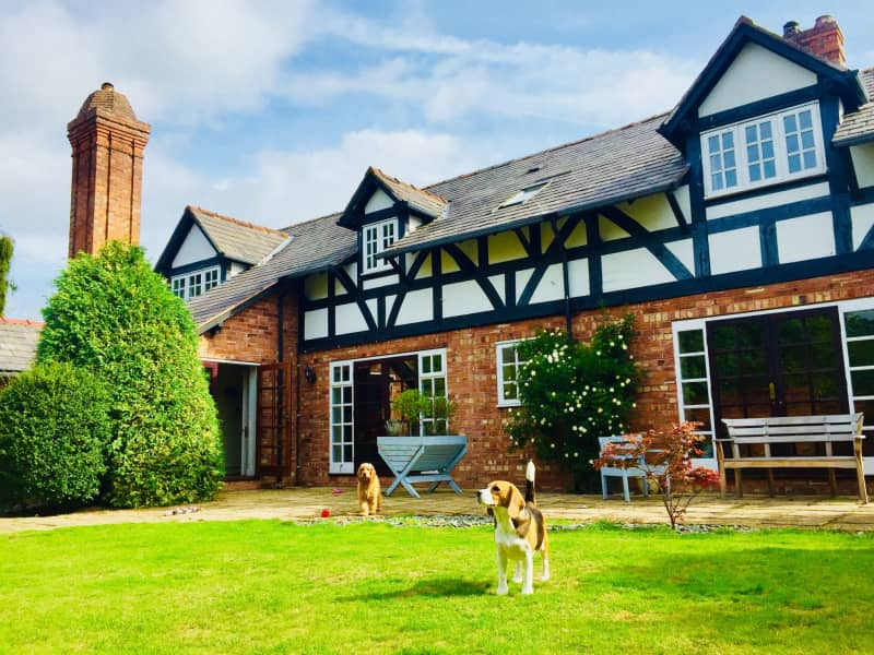 Housesitting assignment in Chester, United Kingdom