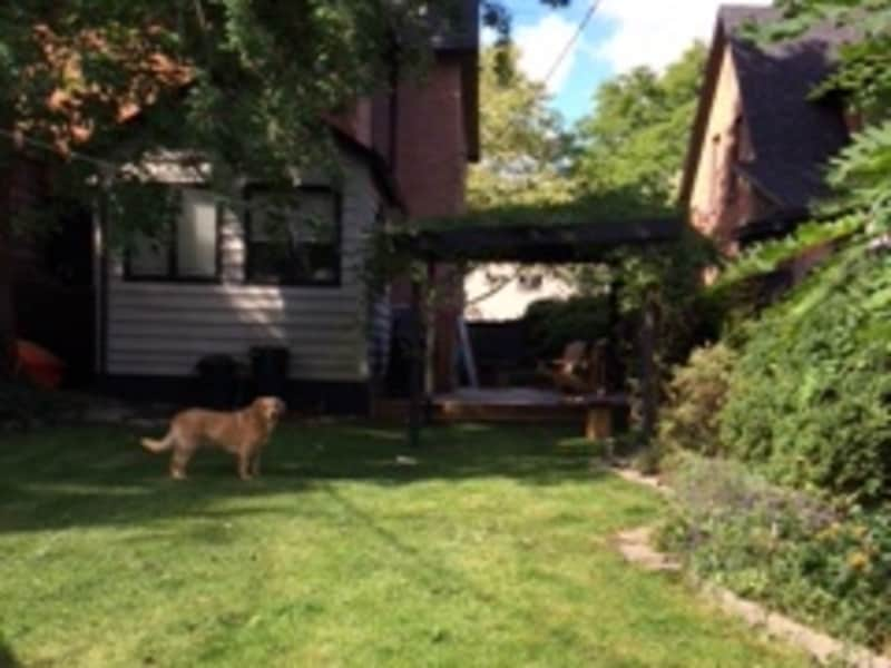 Housesitting assignment in Windsor, Ontario, Canada