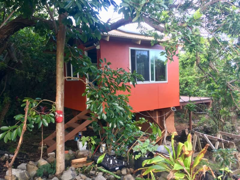 Housesitting assignment in Captain Cook, Hawaii, United States