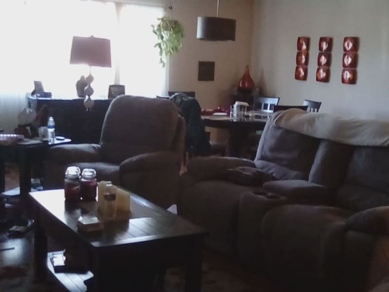 Housesitting assignment in Willow Grove, Pennsylvania, United States