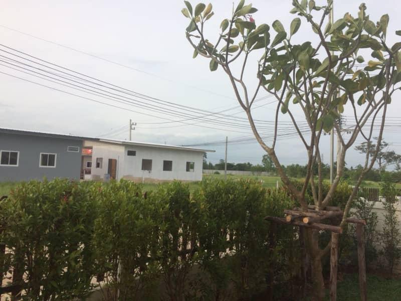 Housesitting assignment in Roi Et, Thailand