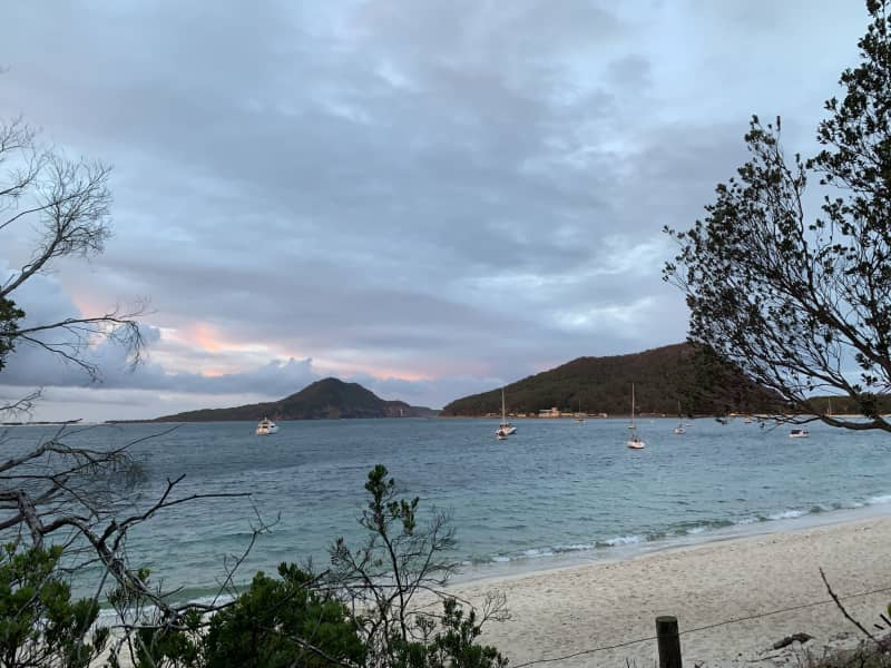 Housesitting assignment in Salamander Bay, New South Wales, Australia