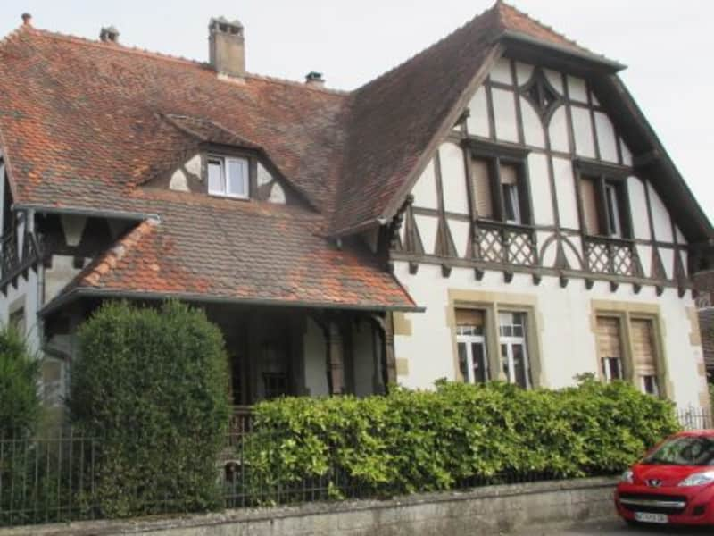 Housesitting assignment in Strasbourg, France