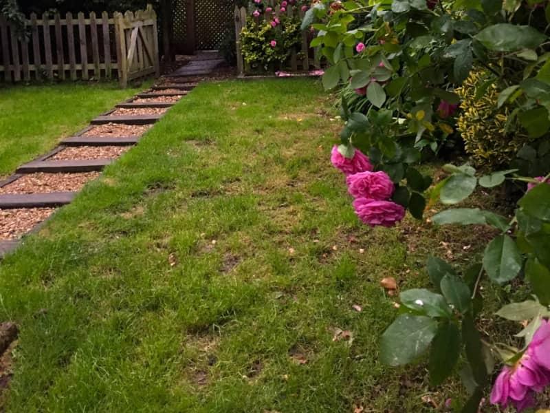 Housesitting assignment in Barnet, United Kingdom