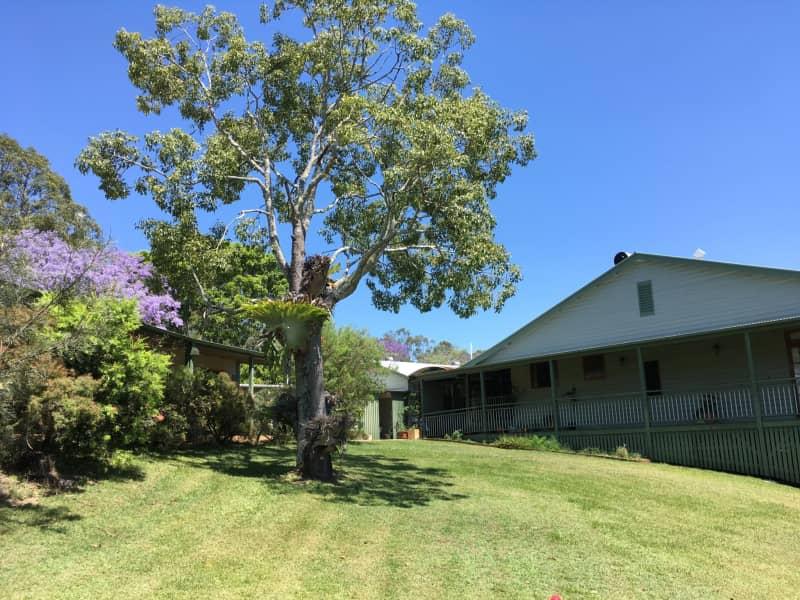 Housesitting assignment in Amamoor, Queensland, Australia