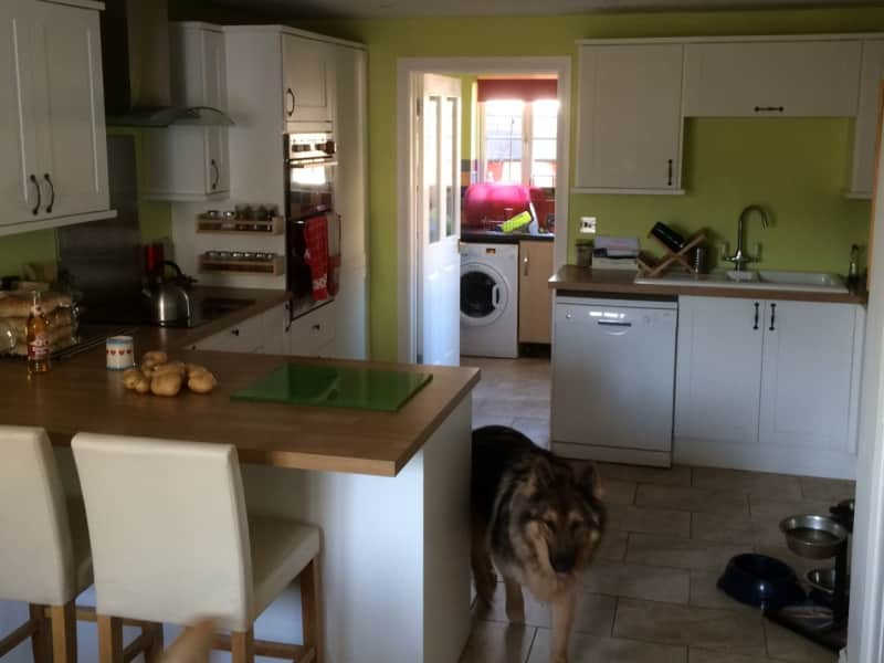 Housesitting assignment in Swindon, United Kingdom