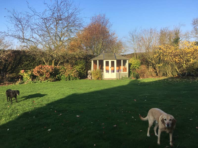 Housesitting assignment in North Wootton, United Kingdom