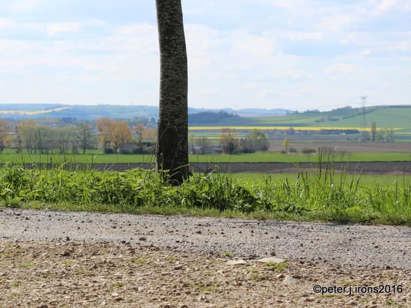 Housesitting assignment in Bas-et-Lezat, France