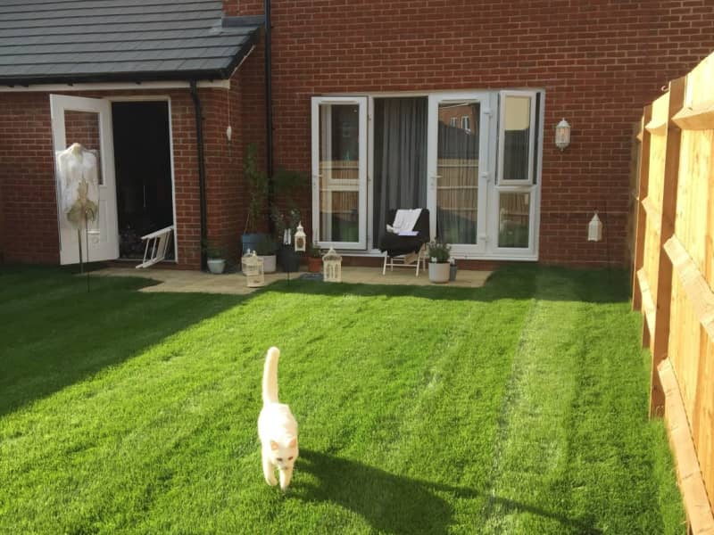 Housesitting assignment in Littlehampton, United Kingdom