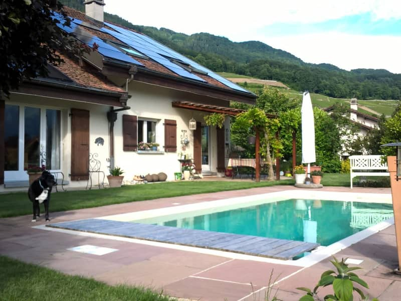 Housesitting assignment in Ollon, Switzerland