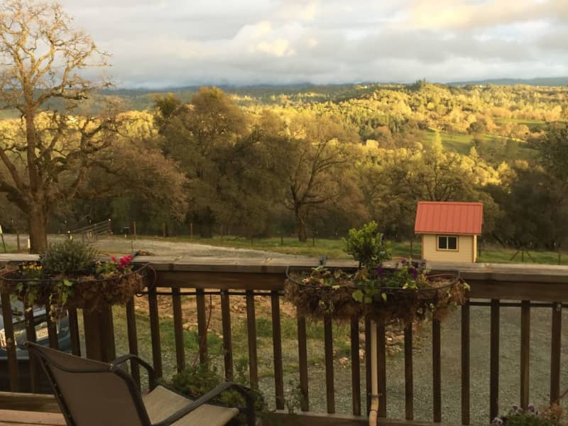 Housesitting assignment in Fiddletown, California, United States