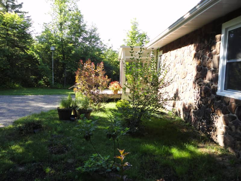 Housesitting assignment in Bobcaygeon, Ontario, Canada