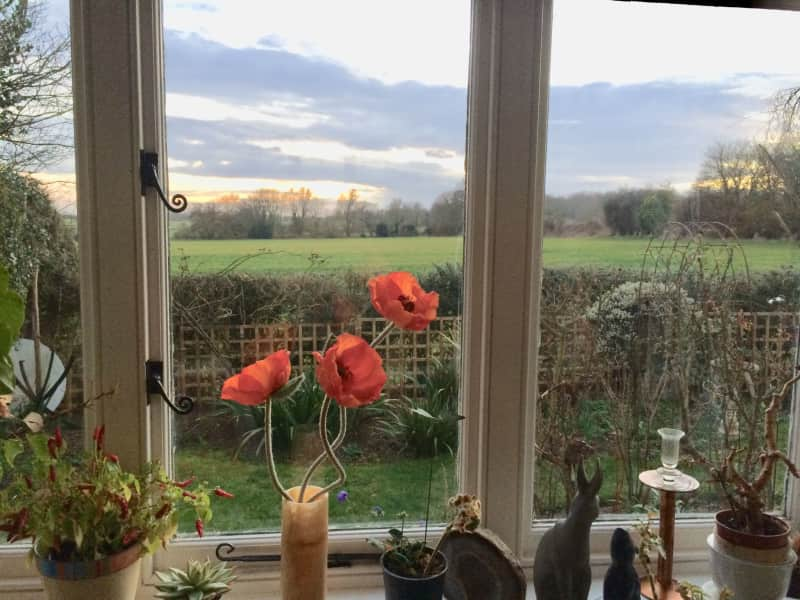 Housesitting assignment in Wye, United Kingdom