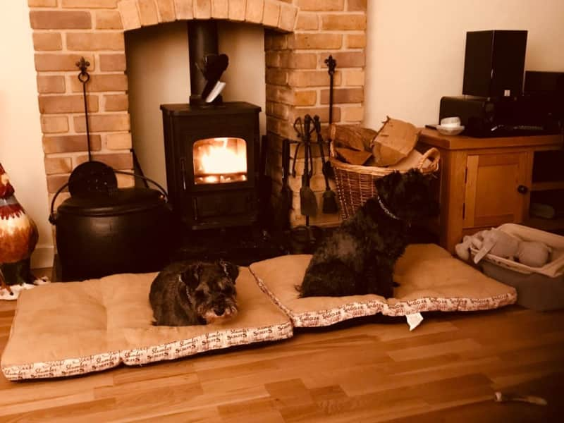 Housesitting assignment in Hatfield Heath, United Kingdom