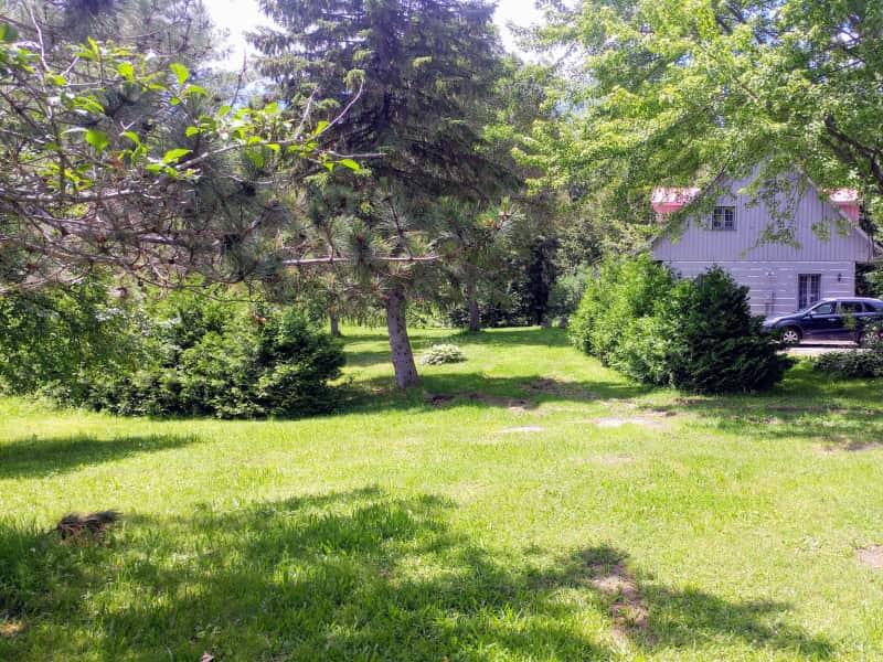 Housesitting assignment in Kinburn, Ontario, Canada