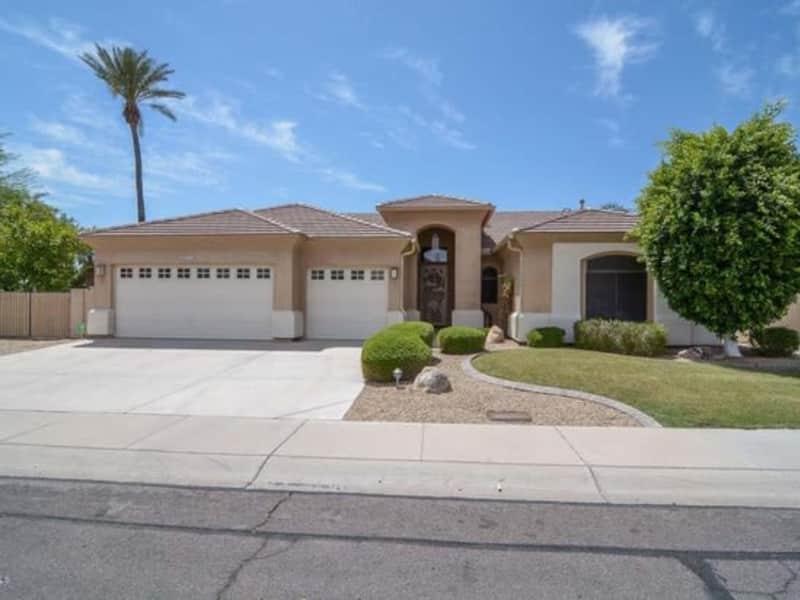 Housesitting assignment in Glendale, Arizona, United States