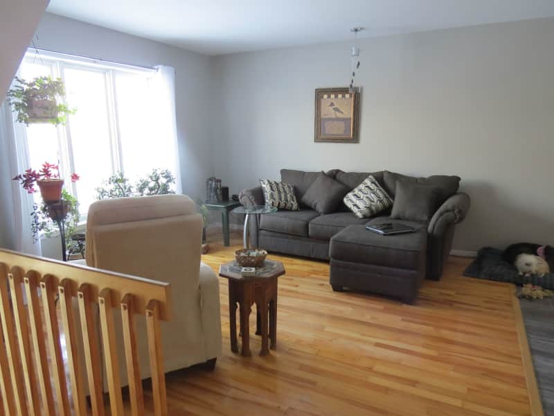 Housesitting assignment in Sherbrooke, Quebec, Canada