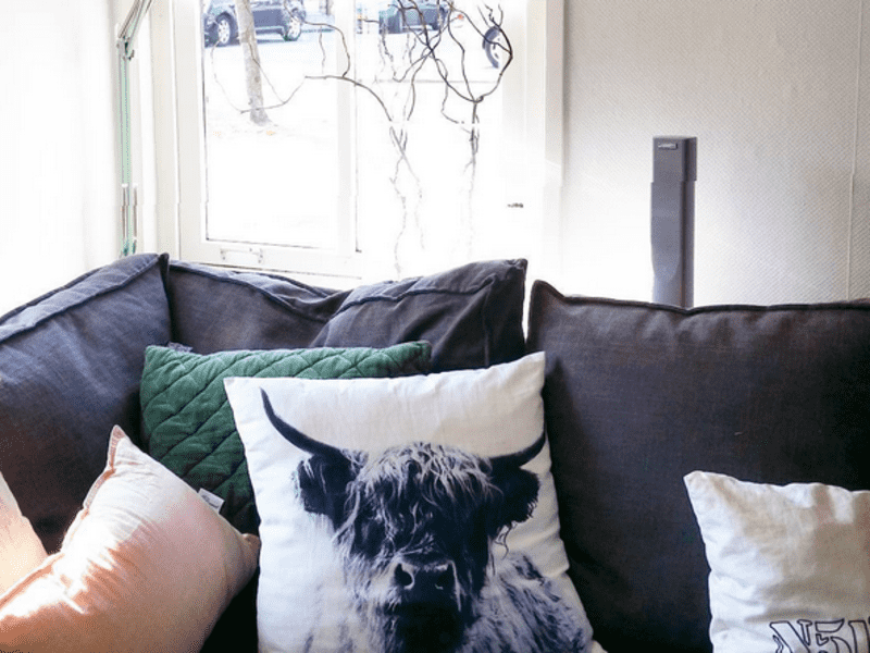 Housesitting assignment in Stolwijk, Netherlands