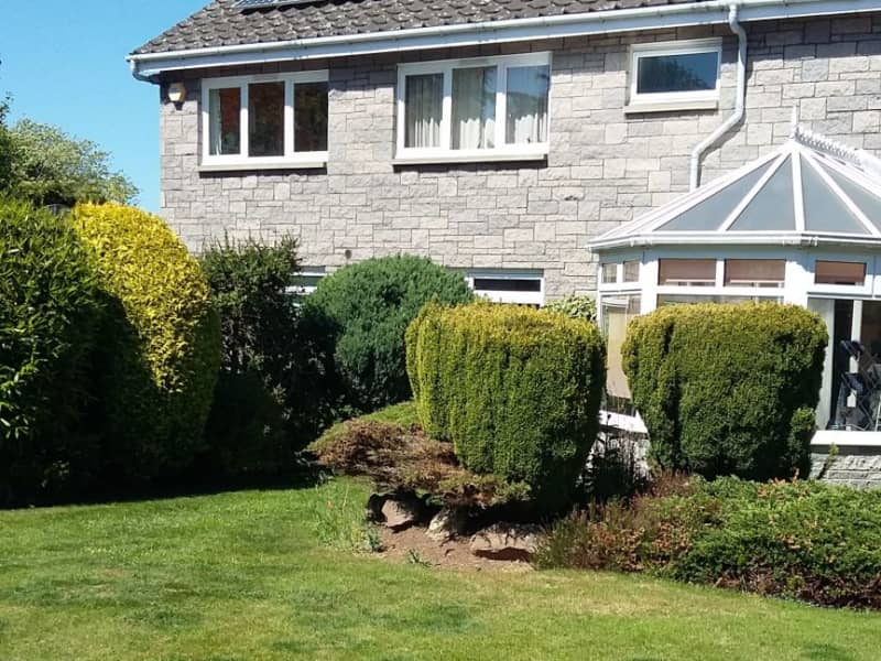 Housesitting assignment in Longniddry, United Kingdom