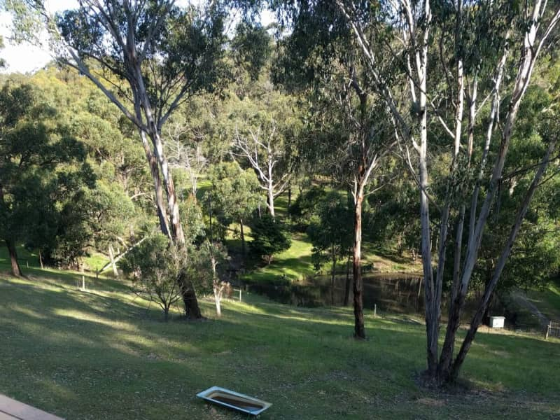 Housesitting assignment in Beaconsfield, Victoria, Australia