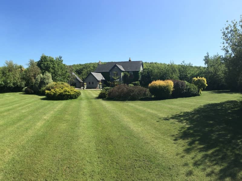 Housesitting assignment in Newtownards, United Kingdom
