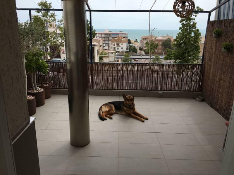 Housesitting assignment in Santa Pola, Spain