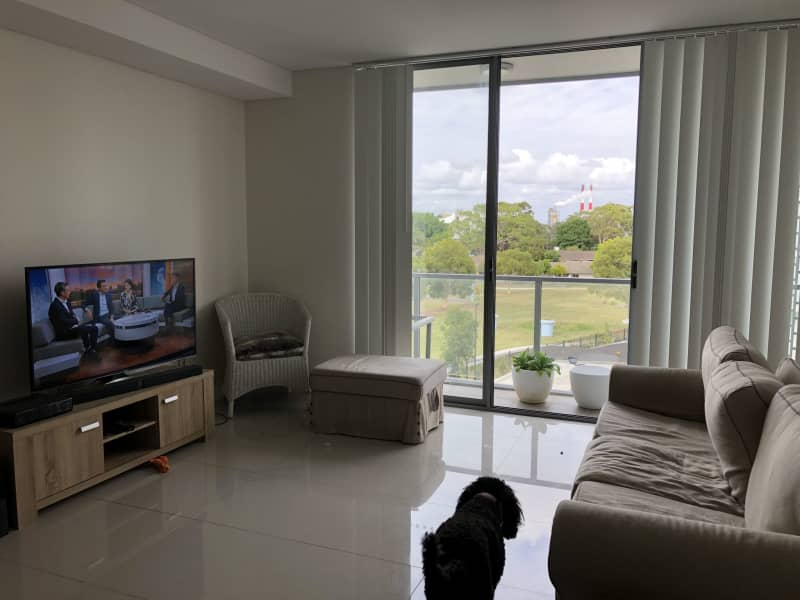Housesitting assignment in Hillsdale, New South Wales, Australia