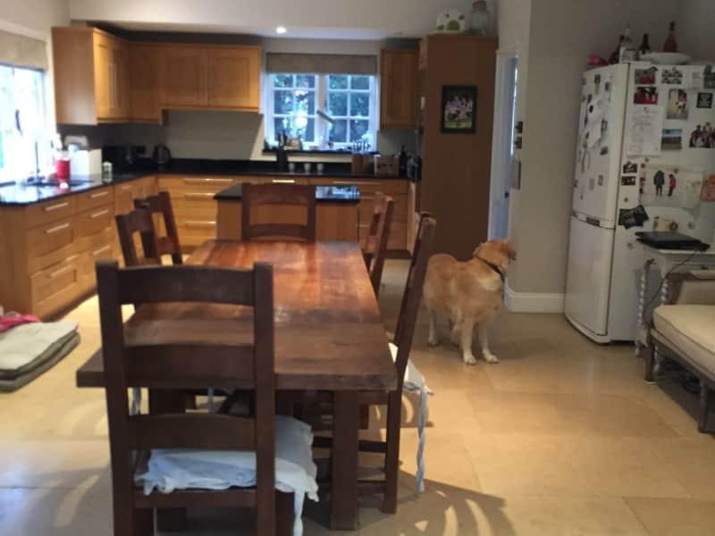 Housesitting assignment in Edenbridge, United Kingdom