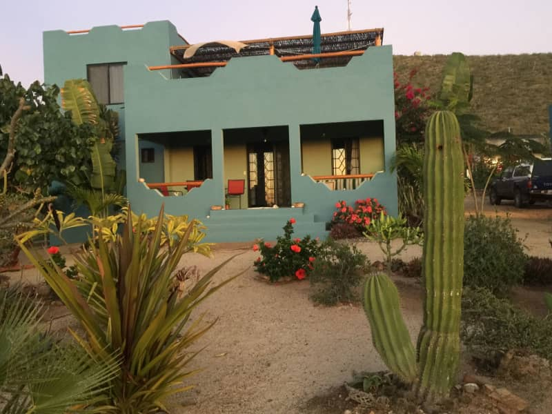 Housesitting assignment in Todos Santos, Mexico