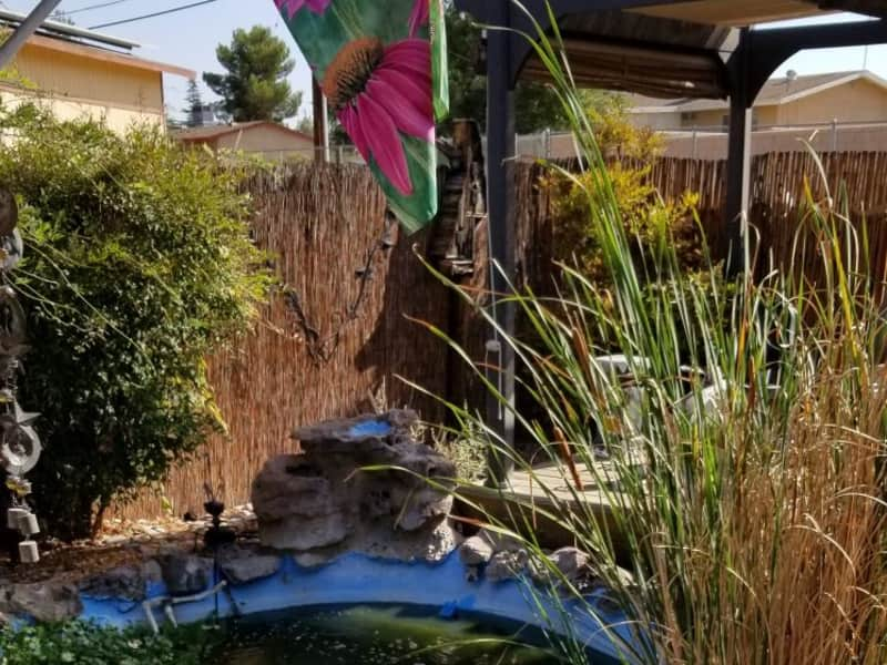 Housesitting assignment in Apple Valley, California, United States