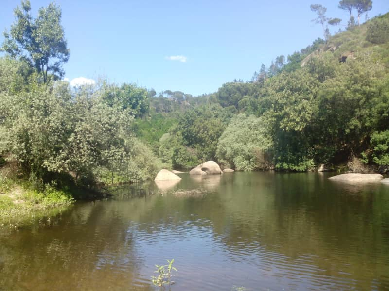 Housesitting assignment in Santa Comba Dão, Portugal