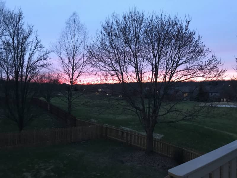 Housesitting assignment in Lexington, Kentucky, United States