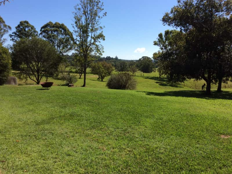 Housesitting assignment in Booyong, New South Wales, Australia