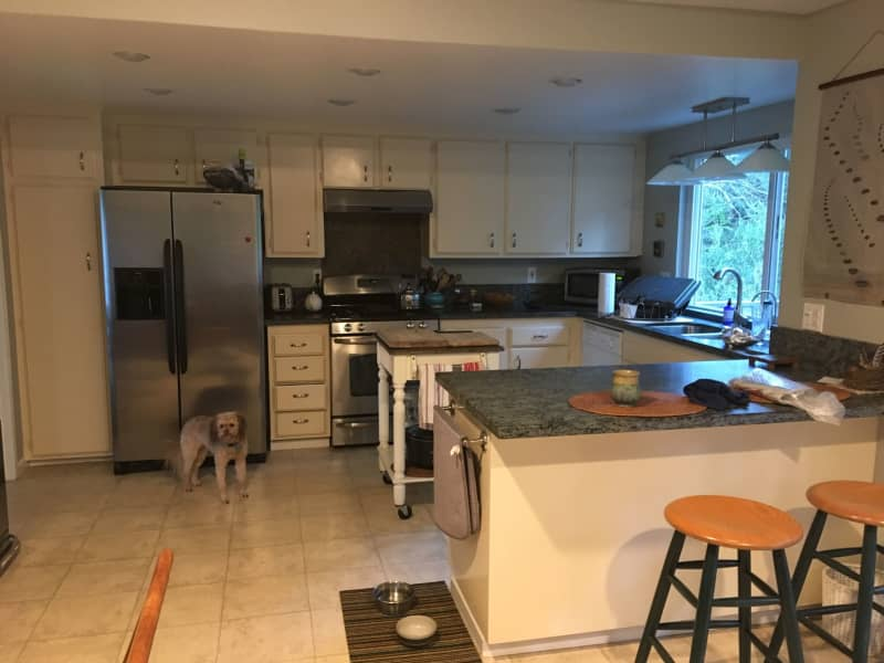 Housesitting assignment in Santa Rosa, California, United States