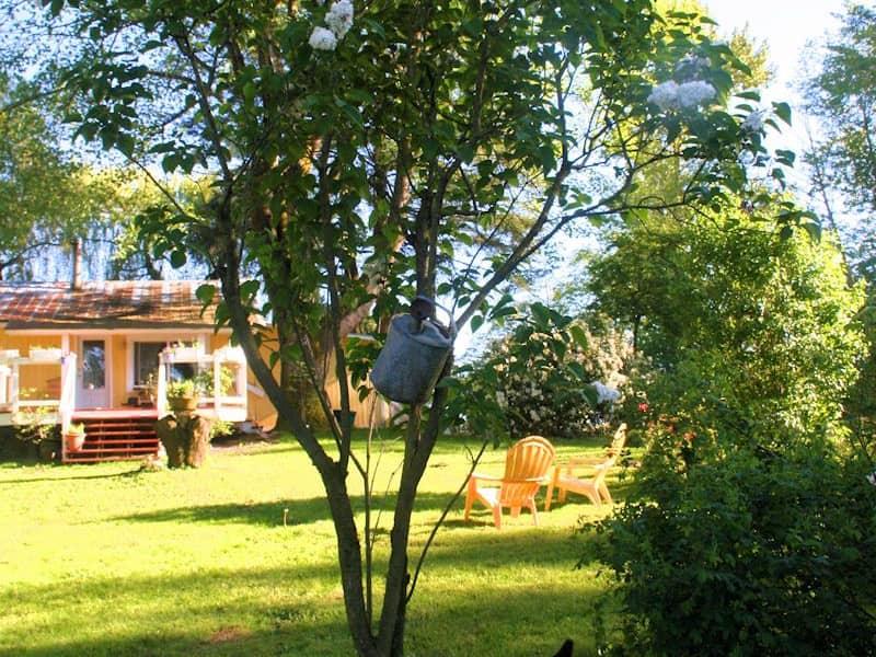 Housesitting assignment in Langley, British Columbia, Canada