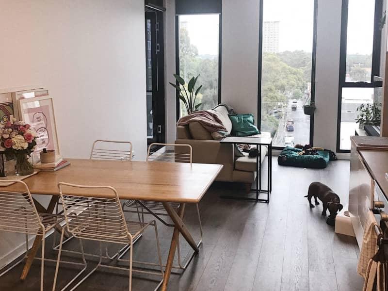 Housesitting assignment in Collingwood, Victoria, Australia
