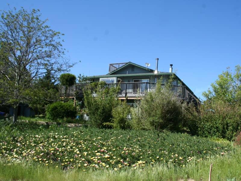 Housesitting assignment in Santa Cruz, California, United States